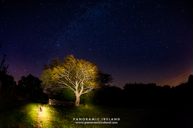 The Landscape Photographer's Cat viewing the night sky in Ireland