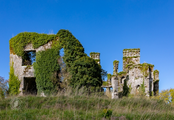 Barrymore Castle ruins - Castlelyons, County Cork, Ireland