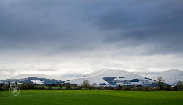 Green fields of Ireland with snow-capped mountains
