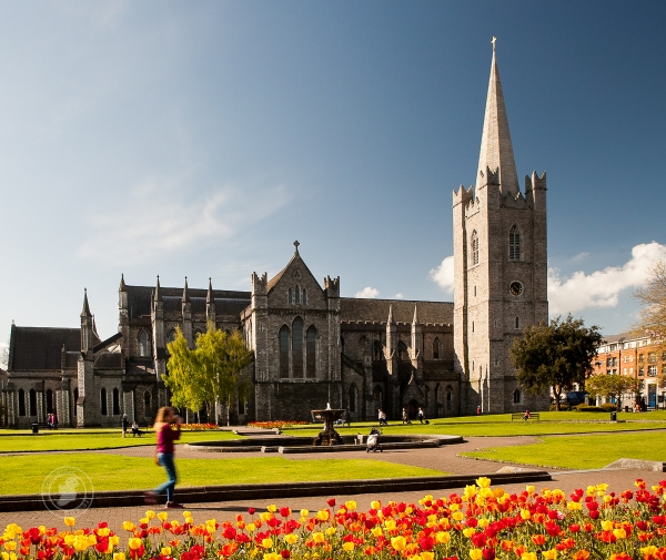 Colour from Dublin's Parks - St. Patrick's Cathedral and park, Dublin, Ireland on a sunny day