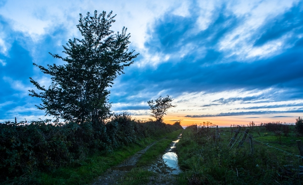 Sunset in the Midlands of Ireland, Landscape Photography