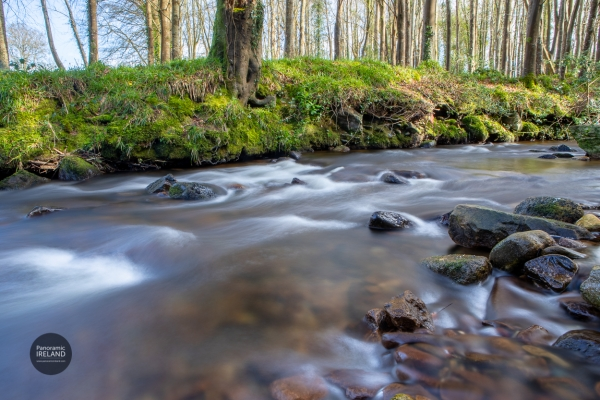 Views of the stream, photographing the natural landscapes of Ireland