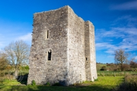 Threecastles, County Wicklow - impressive ruins of 1500s tower house