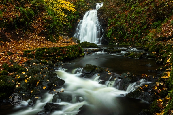 Irish waterfall in autumn - landscape photography workshops