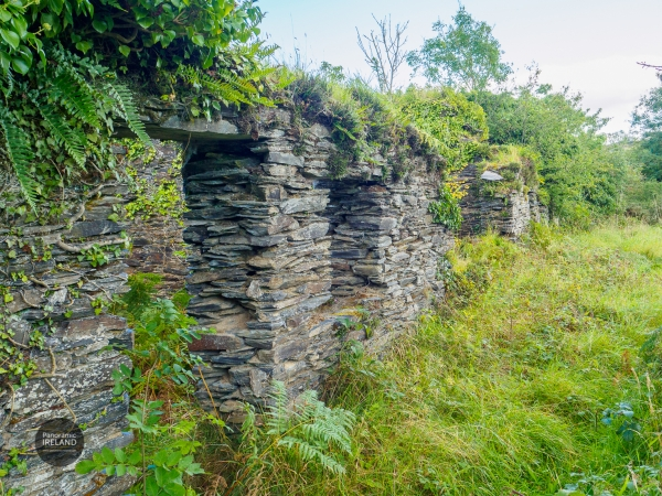 Old miners' cottages - reclaimed by nature in the Irish countryside