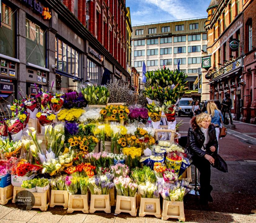 Blumenstand in der Grafton Street