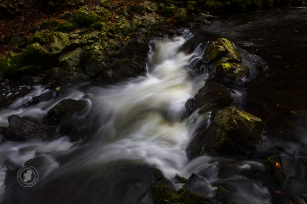The stream, flowing water over rocks