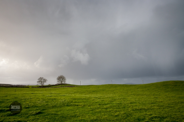 Ireland is green year round, a winter scene from December