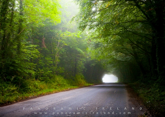 A Scenic Drive Along Ireland's Backroads