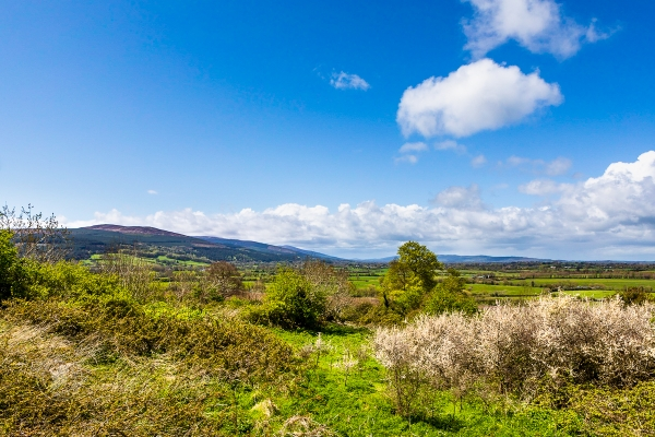 Green landscapes of Ireland in May